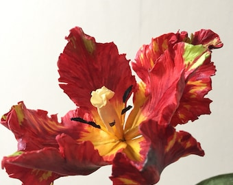 Parrot Tulip / Nature Curiosity / Flower Sculpture / Paper Flower / Red Tulip