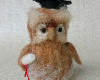 Owl ,Graduation gift, needle felted owl, felted owl, wise owl