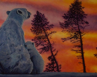 Polar Affection
