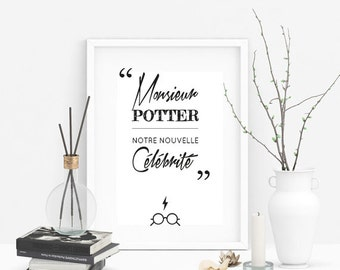 "Harry Potter ""Mr. potter, our new celebrity"" quote"