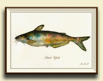 PRINT-Catfish - fish watercolor painting print - game fishing decor- fish art wall decal nursery- Channel Catfish - Art Print by Juan Bosco