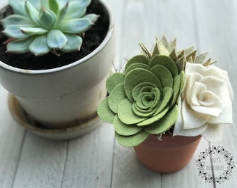Potted Felt Succulent Arrangement, Felt Succulents, Potted Succulents, Succulents, Succulent Arrangements, Mini Succulents