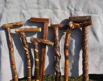 Handcrafted walking canes from the Tennessee Hills