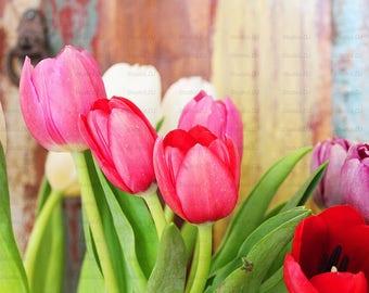 Digital Download Tulips Print Printable Art Instant Download Digital Flowers Wall Decor Print Download 8x10