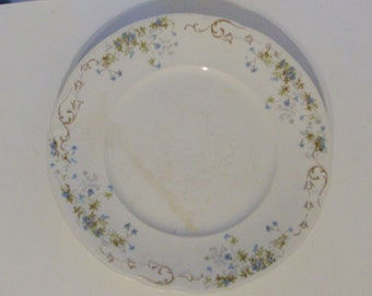 Blue and Green Floral Plate by Knowles, Taylor, and Knowles