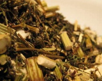 Oriental Wormwood - Sweet Annie - Artemisia annua Cut
