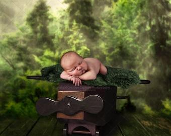 Newborn Digital backdrop / background / plane / forest
