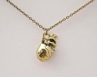 antique bronze anatomical human heart necklace