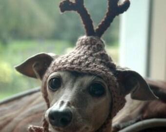 REINDEER dog hat - Christmas pet hat - Humorous Funny Antlers - 2 - 20 lbs -Made to Order