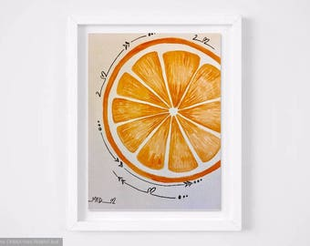Original watercolor Fruit Orange painting white sketch interior decor modern minimalist
