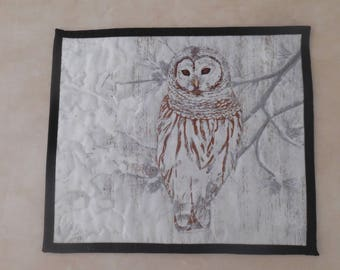 Winter Owl Quilted Wall Hanging, Wall Decor, Winter Decor, Cabin Decor