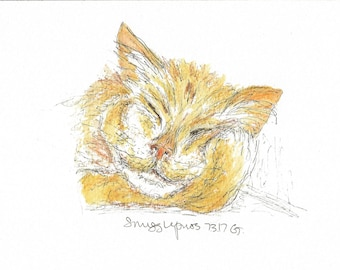 Snugglepuss (pack of 4) Greeting Cards - blank inside