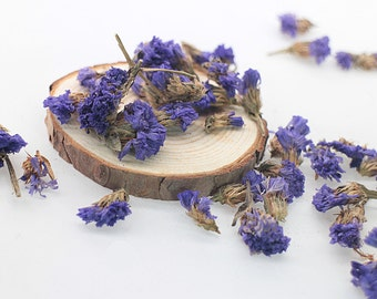 Dried Statice Flower Seed, 30g Dried Flower Filler, Purple Foliage Petals, Botanical Jewelry Filling