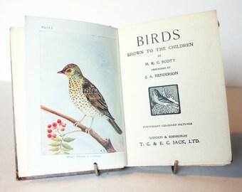 antique Illustrated Bird book with colour Plates 1900 Vintage childrens Ornithology Hardback Rare antique Wildlife nature
