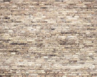 Vinyl Photography  Backdrop Photo Prop - Cafe Brick