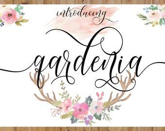 Calligraphy Swirly Digital Font Handwritten digital font download swash modern calligraphy font bundle invitations, wedding, Christmas fonts