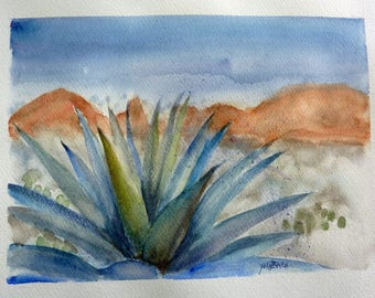 GRASSE in the desert agave plant
