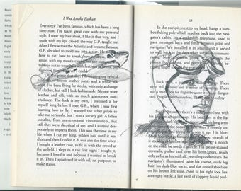 drawing in books - I was Amelia Earhart