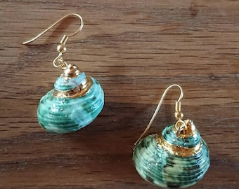 Green Shell Earrings