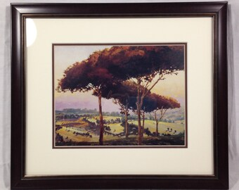 Framing of Landscape with Trees