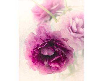 Ranunculus Art Print,  Purple Floral Art Print, Ethereal Wall Art, Flower Photography, Bedroom Print, Nursery Art