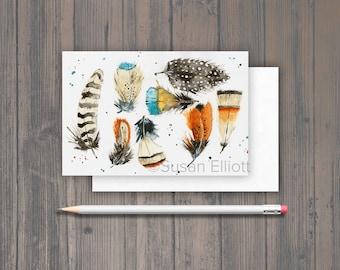 Feathers Postcard