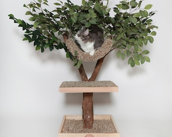 Seedling Cat Tree