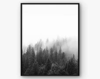 Forest Photography, Black and White Forest Print, Nature Wall Art, Treetops Print, Contemporary Art, Nature Photography, Scandinavian Art