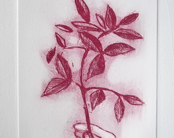 the oliver tree, original etching,signed, red and White, Leaves, Branch,Sketch,Nature Illustration