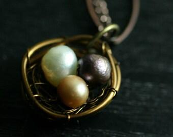 June Nest