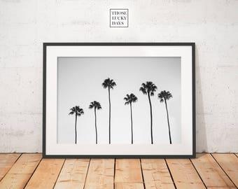 Palm tree, Palm tree print, instant download, Barcelona, minimal photo, Minimal photography, Original artwork, Wall art, tree, nature