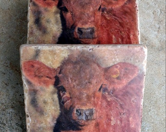 Cow Stone Coasters - Red Calf Farmhouse Decor - Baby Animal Nursery Decor - Red Cow Drink Coasters - Cow Photo Coasters - Farm Animals