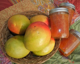 Mango jam, 8 oz jar, hand crafted, small batch,tart yet sweet