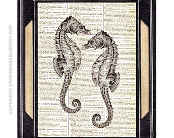 SEAHORSE COUPLE art print wall decor marine sea nautical ocean love wedding anniversary illustration on vintage dictionary book page 8x10