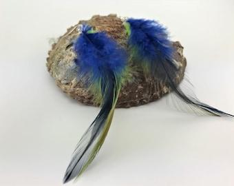 Blue/Green Feather Earrings dangle & drop