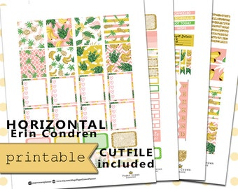 Horizontal Printable Planner Stickers for use with Erin Condren Life Planner/Resort Wekkly Planner Sticker Kit/Silhouette/Download/PDF