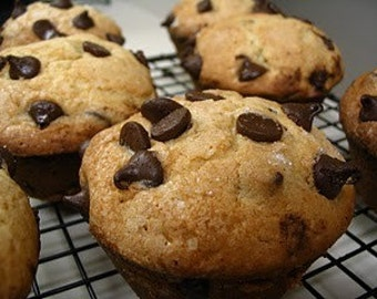 6 Jumbo Chocolate Chip Muffins