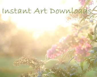 Photography background, pink Butterfly bush, text area, digital backdrop template,  Instant download, Landscape template, Large art prop,