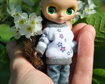 Mini Sweatshirt for Petite Blythe Raglan-pullover otfits clothing handmade knit miniature clothes