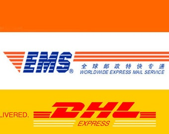 EMS or DHL express shipping for the first 0.5kg to some countries