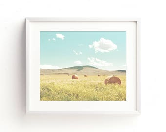 """landscape, colorful landscape, large art, large wall art, clouds, fields, modern farmhouse, canvas wall art, prints - """"A Day in the Fields"""""""