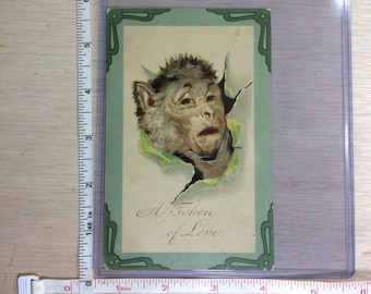 Vintage Old Post Card Monkey A Token Of Love Used