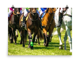 Philadelphia Poster Horses Willowdale SteepleChase  Equine Fine Art Photography Candid Natural Images (Poster)