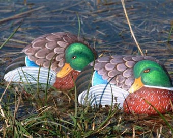 How to paint a mallard duck on rock-Rock painting tutorial-Learn how to paint on stone-Pdf