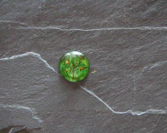"""Naughty tree"" 20 mm cabochon glass"