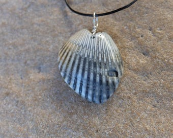 Shell jewelry as fractal wing heart necklace - naturally sourced in Australia. wing jewelry, fibonacci sequence in nature