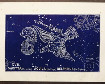 1911 Antique print of STARS. CONSTELLATIONS. The Eagle. Astronomy print. Zodiacal Constellations Zodiac. 117 years old celestial chart