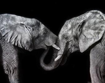 Symbiosis - Fine Art print of my original graphite drawing of two elephants