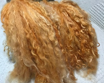 """Suri Alpaca Locks, 6 Inches, Doll Hair, Pumpkin, """"Precious"""""""