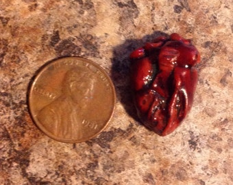 Miniature Human Heart! OOAK! Dollhouse